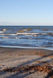 Waves on the Beach, 2015 von Caitlin McGee