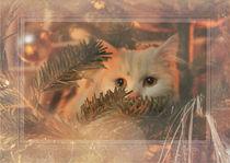 Weihnachtskarte Katze 2 von artfulhorses-sabinepeters