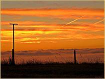 ~ Morning Light ~ by Sandra  Vollmann