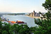 Budapest, view of Danube river and Parliament by Tania Lerro