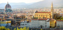 Florence panoramic view, Firenze, Tuscany, Italy by Tania Lerro