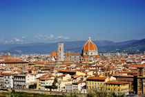 Florence and Saint Mary of the Flower panoramic view, Tuscany, Italy by Tania Lerro