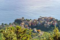 Riomaggiore panoramic view over Mediterranean sea, Cinque Terre, Italy von Tania Lerro
