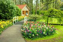 Tulip Cottage  von Rob Hawkins