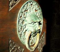 Entrance Doors  von bebra