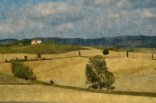 Toskana-dipinto