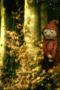 Ein Männlein steht im Walde..... by Chris Berger