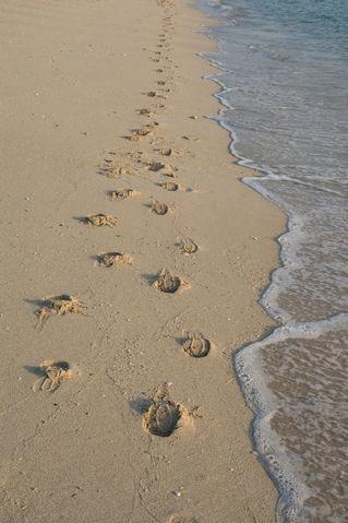 Multiple-footprints-on-the-beach-sand