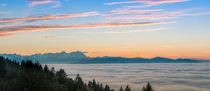 Bodensee im Nebel by Thomas Keller