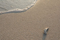 Beach Waves Glowing at Morning by Masoud Rezaeipoor