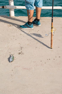 Dead Fish and Fisherman by Masoud Rezaeipoor