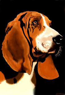~ Basset ~ by Sandra  Vollmann