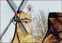 Stadtbilder  Holland Windmühle von bilddesign-by-gitta