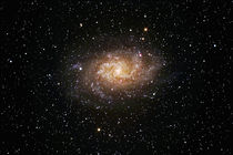 Dreiecksgalaxie - Messier 33 - triangulum galaxy von monarch