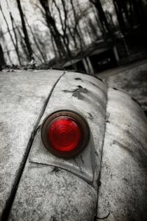 Red light by Susanne  Mauz