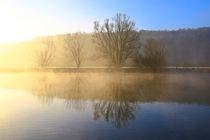 Bäume und Nebel 2 by Bernhard Kaiser