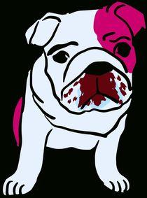 Hund Bruno by sigursson