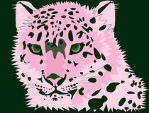 Tiger Rosi von sigursson