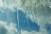 Eiszapfenparade von Sabine Radtke