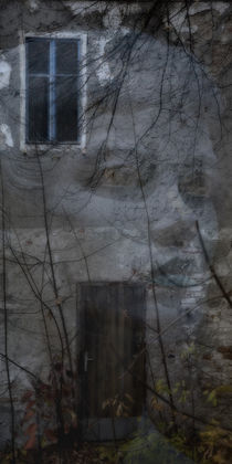 'View of an old house - the face' von Chris Berger