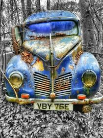 Ford vs Decay by Susanne  Mauz
