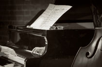 Grand Piano and Music Notes  von cinema4design