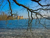 Winterliches Schloss Moritzburg bei Dresden von ullrichg