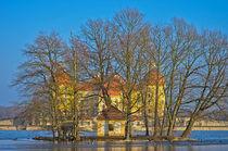 Winterliches Schloss Moritzburg bei Dresden by ullrichg