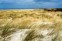 Dünenlandschaft auf Langeoog von sven-fuchs-fotografie