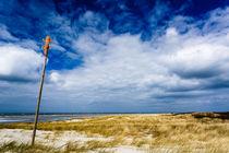 Dünenlandschaft auf Langeoog von renard