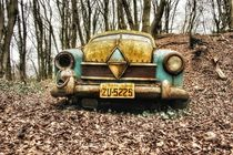 Borgward 3 by Susanne  Mauz