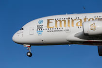 Emirates A380 Airbus And Pigeon von David Pyatt