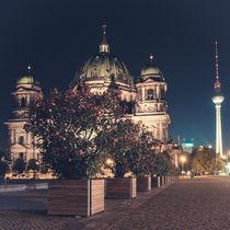 Berliner Dom mit Fernsehturm und Blume von Franziska Mohr