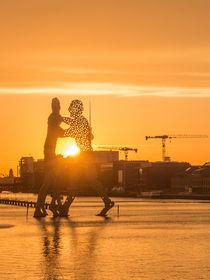 Moleculemen im Sonnenuntergang III von Franziska Mohr