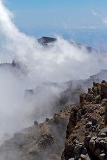 Nebel im Gebirge auf La Palma von monarch