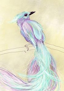 Vogel, Bird von sha-designandart