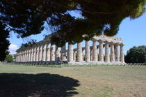 Greco Roman Temple At Paestum by Malcolm Snook