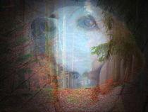 laras traum by hedy beith