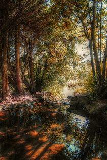 On Golden Pond von CHRISTINE LAKE