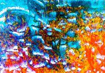 Am Korallenriff by Peter Norden