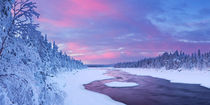 Sunrise over river rapids in a winter landscape, Finnish Lapland by Sara Winter