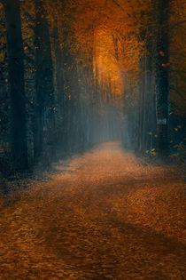 Fabulous path. Autumn. von Katarjina Telesh