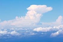 Über den Wolken von monarch