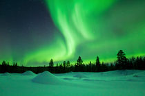 Aurora borealis over snowy landscape winter, Finnish Lapland von Sara Winter