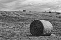 Hay Bales von Vicki Field