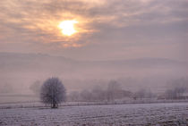South Downs Hoar Frost von Malc McHugh