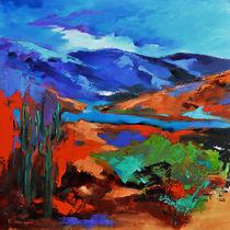 Along the Trail - Arizona von Elise Palmigiani