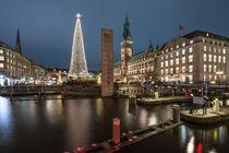 Hamburg Rathaus Weihnachtsmarkt mit Alsterarkaden II von elbvue von elbvue