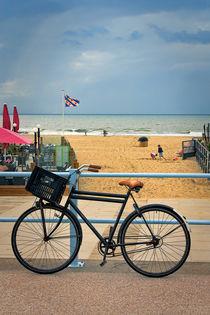 Walk with bicycle by Katarjina Telesh