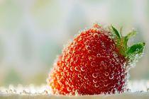 strawberryseason von Katja Bartz